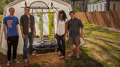 Renewable Energy Students Develop Aquaponics System